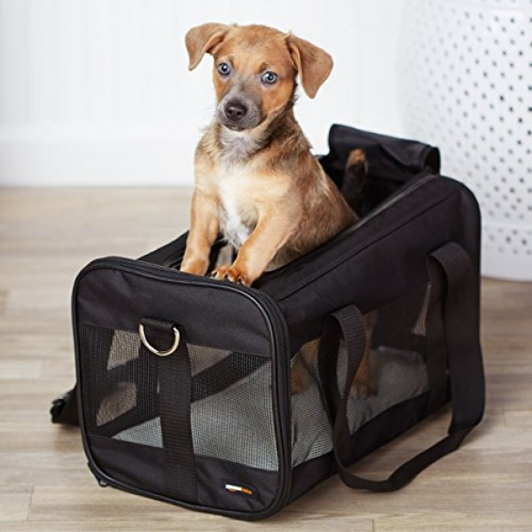 Amazon Basics Soft-Sided Mesh Pet Travel Carrier, Medium 17 x 10...