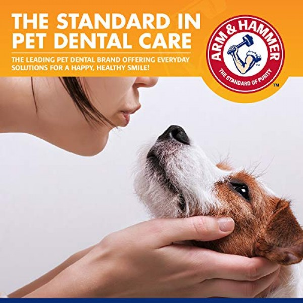 Arm & Hammer Clinical Care Travel Dental Kit For Dogs in Vanilla ...