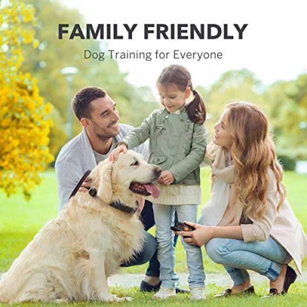 DOG CARE Dog Training Collar with Remote - Rechargeable Dog Shock...