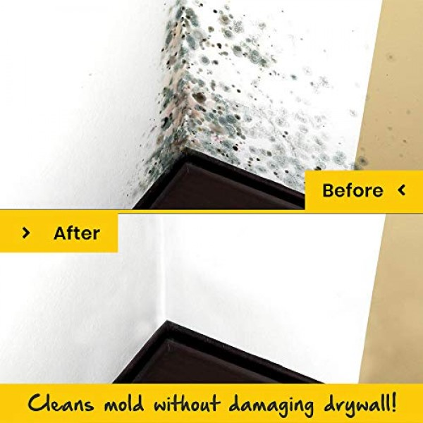 EcoClean Solutions Mold, Mildew & Algae Remover | No-Scrub Stain ...