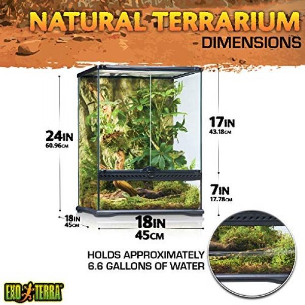 Exo Terra Glass Natural Terrarium Kit, for Reptiles and Amphibian...