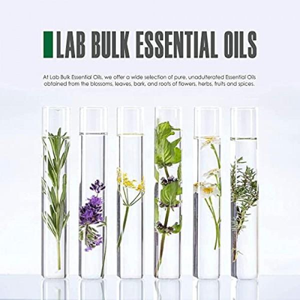 16oz Bulk Peppermint Essential Oil Giant 16 Ounce Bottle- Therap...