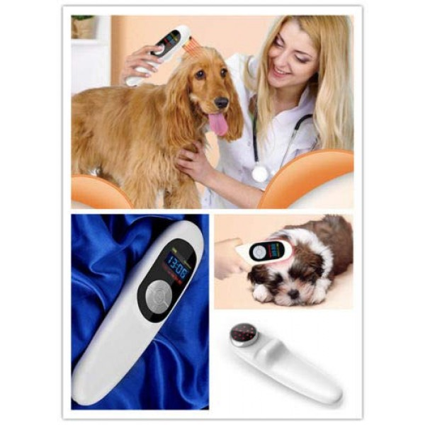 2020 LASTEK Red Light Treatment Device for Pets,A Home Acupunctur...