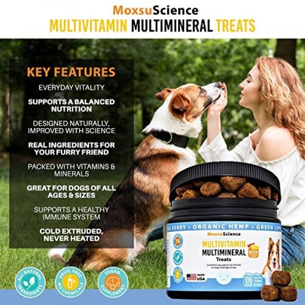 10 in 1 Dog Multivitamin Multimineral Treat – 170 Soft Chews - Ma...