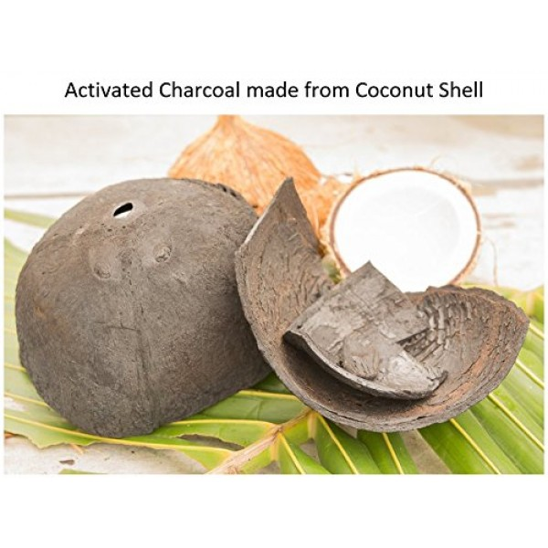 Nature's Beauty Activated Charcoal Facial Scrub, Made in USA, Det...